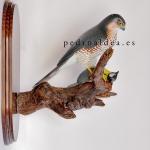 escultura-gavilan-2