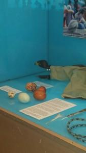 Marionetas de cría y huevos de sustitución
